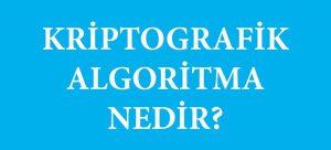Kriptografik Algoritma Nedir?
