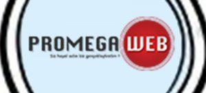 Promegaweb tasarım logo