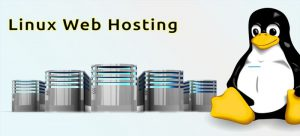Linux Hosting Nedir?