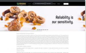izmir web sitesi tasarımı referans firmino organic