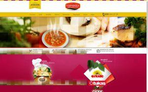 izmirde kurumsal web sitesi tasarımı harmanlar yemek