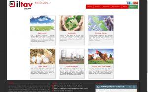 izmir kurumsal web sitesi ve özel yazılım proje hizmeti iltav
