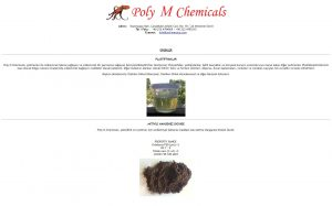 izmir kurumsal e-mail barındırma hosting hizmeti polym group